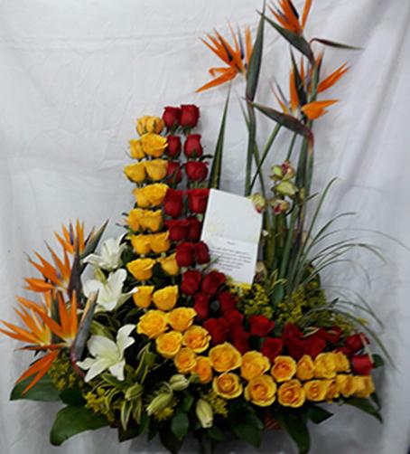 Diseño Curvo – 24 Rosas Rojas, 24 rosas amarillas, 6 aves del paraíso, 3 lirios.