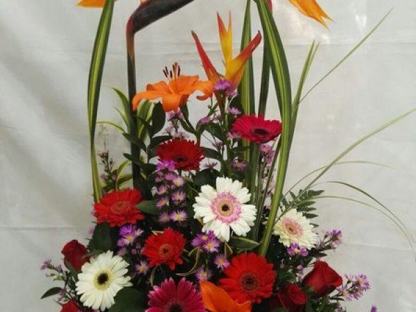 Rama Formal Triangulo. 2 aves del paraíso, 2 lirios, 8 rosas, 8 Gerberas, 2 heliconias. Valor 85.000$